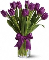 Purple and White Tulip Centerpieces with Black Ribbon instead of Purple. Passionate Purple Tulips