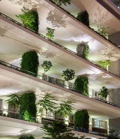 42 Best Green Walls images   Green, Green facade, Green ...