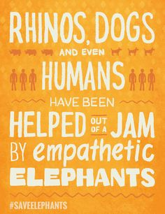 Elephants need you. See how you can help The Nature Conservancy. Learn more #SaveElephants -http://www.nature.org/media/elephants/share/jam.html
