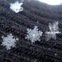 magnified snowflakes I was in a snowfall like this once in Gunlock, UT.  My sisters and I went for a walk while it snowed and it is one of the most memorable times in my life.  We were so enthralled by the wonderfully beautiful flakes as they fell on our coats and faces.