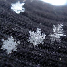 Snowflakes up close ❄
