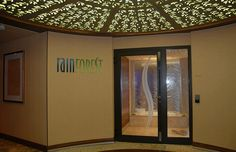 Rainforest Room on the Disney Fantasy - The Best Spa Bargain at Sea. Can't wait to try it!!