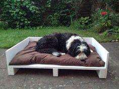 Samstag haben wir den Tag genutzt um Pepe ein Hundebett für's neue Heim zu bauen. Jetzt fehlt nur noch ein neues hübsches Hundekissen und da...