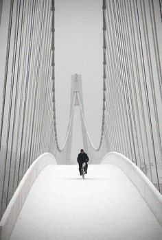 Snowbiker (Pedestrian bridge in Osijek, Croatia) by boriszulj. ° ~ this is amazing. The shadows of the bridge, the perfect placement of the camera, the perfect timing so that you can't see any tracks in the snow. This is beautiful. Black White Photos, Black And White Photography, White Art, Great Photos, Cool Pictures, Foto Poster, Winter Scenery, Pedestrian Bridge, Belle Photo