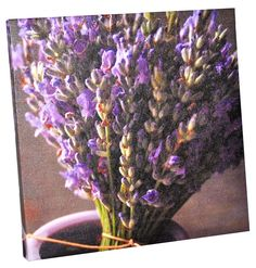Lavender is hot!   Painting - lavender model (14,99 lei), Bam Boo, Baneasa Shopping City