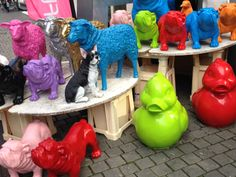 Bloemenwinkel Breda Halstraat