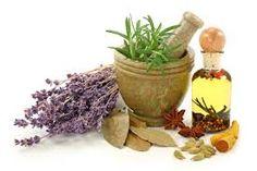 Como usar el Llanten de forma medicinal – Hierbas medicinales
