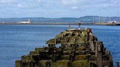 LEITH DOCKS, Edinburgh (behind the OCEAN TERMINAL)