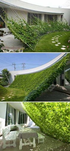 #12. Steel cables for creepers to let you have a growing shade.