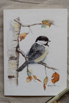 Little Chickadee Fall Leaves Holiday Christmas Card watercolor card-Prints - Petite carte de Noël vacances feuilles automne Mésange aquarelle carte-impressions Sie sind an der - Watercolor Animals, Watercolor Cards, Watercolor Paintings, Watercolors, Watercolor Christmas Art, Simple Watercolor, Bird Paintings, Watercolor Trees, Christmas Paintings