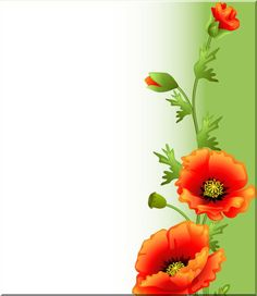 View album on Yandex. Framed Wallpaper, Flower Wallpaper, Wallpaper Backgrounds, Colorful Backgrounds, Borders For Paper, Borders And Frames, Poppy Craft, Boarder Designs, Drawing Frames
