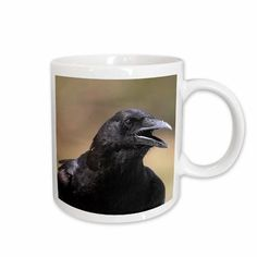 "East Urban Home American Crow Corvus Brachyrhynchos Bird Coffee Mug Color: White, Size: 4.65"" H x 4.9"" W x 3.33"" D"