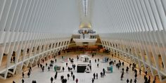 Twin Dies After Plunge From Escalator In World Trade Center Transit Hub