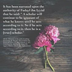 Islamic Love Quotes, Islamic Inspirational Quotes, Motivational Quotes, Imam Malik, Learn Islam, Quran Quotes, Hadith, Love Life, Forgiveness