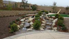 backyard design inland empire
