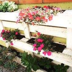 Fioriera da riuso bancale pallet,per giardino o terrazza - piante ...