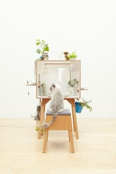 working cat  ;)  desk + stool by torafu