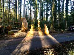 schnitzebitz.ch Country Roads, Luxury, Lily, Glee, Timber Wood, Kunst