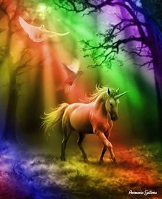- Glimpse of a Unicorn Card by Anne Stokes (Unicorns Cards) at Enchanted Jewelry & Gifts Unicorn And Fairies, Unicorn Fantasy, Unicorn Horse, Unicorns And Mermaids, Unicorn Art, White Unicorn, Images Of Unicorns, Unicorn Painting, Rainbow Unicorn