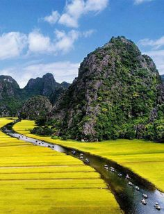 Beautiful Vietnam  http://www.travelandtransitions.com/destinations/destination-advice/asia/