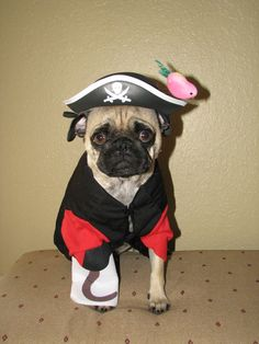 LeeRoy's Halloween costume next year - love the hook