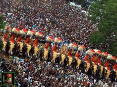 Character: Thrissur Pooram-6. { As population increases, the ...