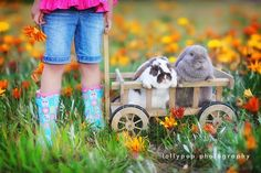 Be Inspired: Chicks and Bunnies {Easter Inspiration} Easter Pictures, Holiday Pictures, Spring Photography, Photography Ideas, Kids Shots, Easter Peeps, Easter Bunny, Spring Photos, Kid Poses
