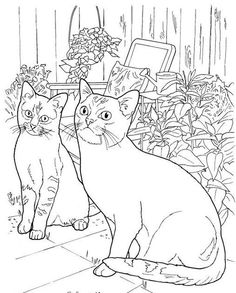 Cat Shape Template - Animal Templates | Color sheets | Cat coloring ...