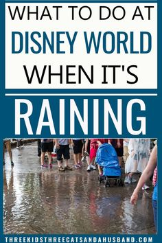 What rides close at Disney World when it rains? What are the best shoes for rain at Disney World? Does Disney World cancel fireworks due to rain or thunder? Learn everything you need to know about surviving the rainy season at Disney. Disney On A Budget, Disney World Vacation Planning, Disney Vacation Club, Disney Day, Walt Disney World Vacations, Disney Planning, Disney World Secrets, Disney World Outfits, Disney World Rides