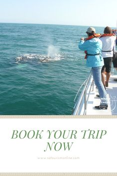 Join us on an unforgettable boat trip in Walker Bay, Hermanus. Witness up close and intimate the mating and calving of southern right whales. South Africa Holidays, Whale Watching, Whales, Tourism, Places To Visit, Southern, Join, Activities, Explore