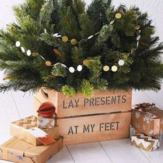 Looking or an alternative Christmas tree stand or skirt for a potted tree? Our wooden Christmas tree planters come in a choice of colours and can be personalised. Small Real Christmas Trees, Potted Christmas Trees, Cosy Christmas, Rustic Christmas, Xmas Tree, Christmas Tree Decorations, Christmas Time, Christmas Wreaths, Christmas Ornaments