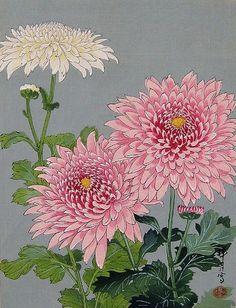 Chrysanthemums by Zuigetsu Ikeda, ca 1950