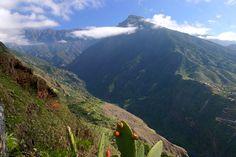 Der Bejenado auf La Palma