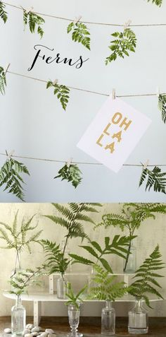 Wedding Trends 2014 - Fern wedding inspiration