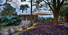 Casa Cor MG - 2013: A arquiteta Anaíne Vieira Pitchon assina o Jardim de Entrada, onde o paisagismo conta com uma forração púrpura, chamada popularmente de trapoeraba (planta do gênero Commelina), que dá cor e contraste ao canteiro em relação ao verde predominante e às formas sinuosas e assertivas da arquitetura