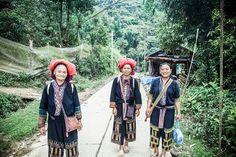 Voyages au Vietnam avec des guides francophones. Voyage humanitaire au vietnam et voyages en groupe au vietnam avec vietnamensemble