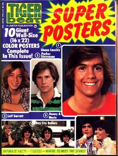 1971-2...Tiger Beat, Tiger Beat Spectacular and Fave..David Cassidy, Donnie Osmond and Bobby Sherman