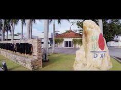 DXN - A Ganoderma vállalat (MAGYAR FELIRATTAL!) Dokumentumfilm a DXN-ről, a kezdetektől napjainkig, a nehézségekről, a sikerekről és a jövőbeli tervekről. http://marticafe.dxn.hu/dxn