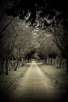 Old Cemeteries | Southern cemetery, manchester. by ~PhilippaJane on deviantART