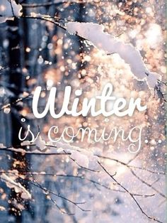 Winter is Comiiiinnnnngggg !! L'hiver arrive !!