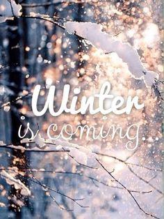 Winter is Comiiiinnnnngggg !! L'hiver arrive !!