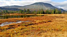 """HØSTKLEDD: Gaustatoppen i september er et vakkert syn. Om ikke lenge vil toppen dekkes av den første """"melisen"""". Mount Rainier, Mountains, Nature, Travel, Naturaleza, Viajes, Destinations, Traveling, Trips"""