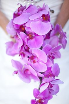 Orchids can be bought potted, cut for a wedding, and will grow year after year.