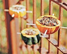 Vogelfutterhaus selber bauen aus Kürbishälften - 22 wunderschöne, kreative Bastelideen