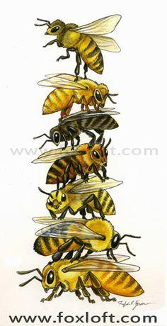Bee Stack by Foxfeather R. Zenkova (top to bottom: Russian, Cordovan, German, Carniolan, Caucasian, Buckfast drone, and Italian queen)