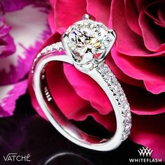 """A heavenly combination of a sleek shank mixed with the elegance of pave, the Vatche """"5th Ave Pave"""" Diamond Engagement Ring shines with 16 Round Brilliant Diamond Melee (0.25ctw; G VS). The scooped 4 prong head is sure to make your diamond feel at home."""