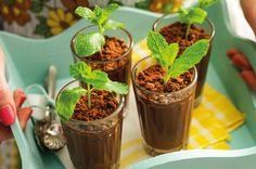 Looking for a healthy chocolate mousse recipe? These minty chocolate mousse pots with avocado will satisfy your cravings without the guilt!