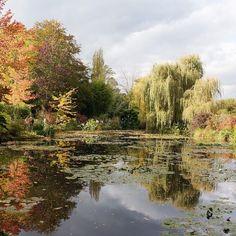 Claude Monet's inspirational garden, blog coming soon on chicenzo,com!