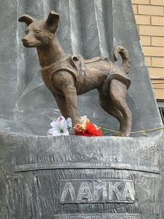 Memorial to Soviet space dog Laika who became the first animal to orbit the Earth - Wikimapia Russia