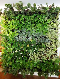 Handsome Diy Examples How To Make Lovely Vertical Garden - Page 16 of 43 Vertical Green Wall, Vertical Garden Plants, Vertikal Garden, Little Gardens, Plant Wall, Herb Garden, Garden Inspiration, Garden Landscaping, Outdoor Gardens